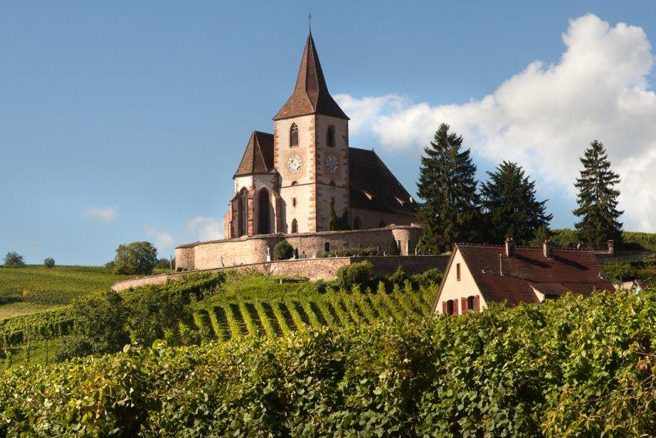 À l'occasion des vendanges, tour d'horizon des vignobles... (Photo RelaxNews)