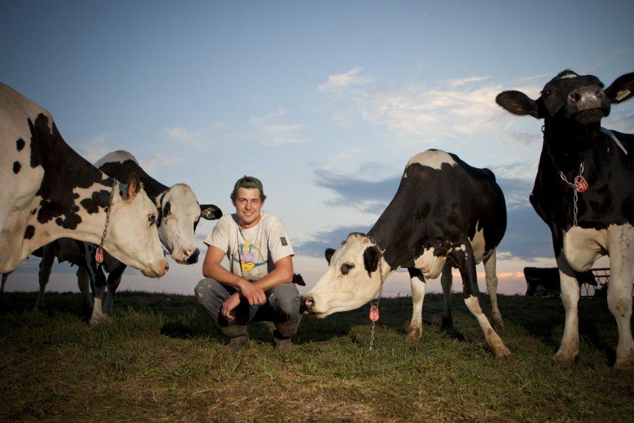 La moitié des 80 vaches laitières de la... (Photo Marie-Hélène Tremblay, collaboration spéciale)