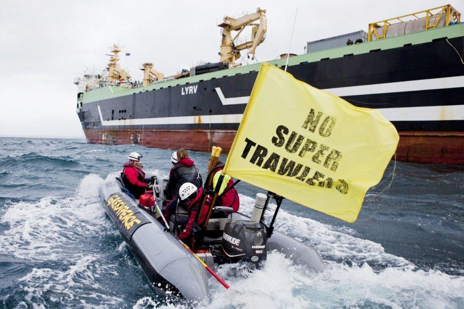 LeFV Margiris, un navire-usine de 9500 tonnes, long... (PHOTO GREENPEACE/AFP)