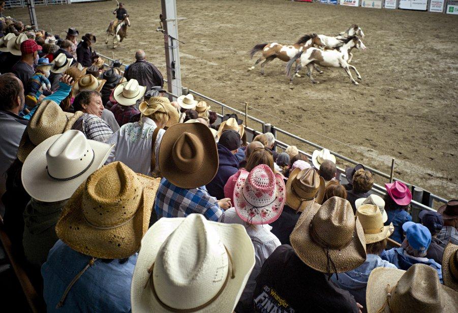 Des chapeaux de cowboy dans les gradins du rodéo. | 11 septembre 2012