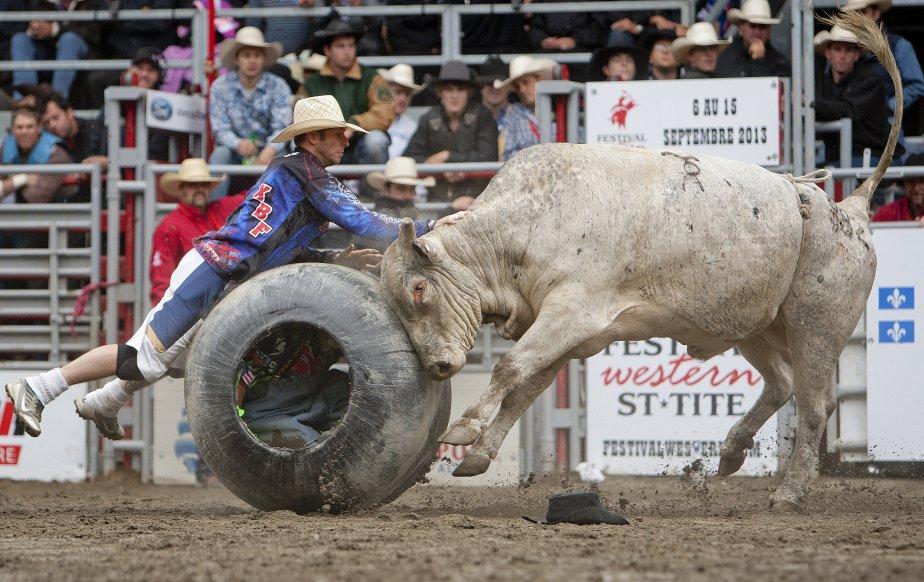 Lors du rodéo, un cowboy tente de distraire un taureau qui s'est acharné sur le baril contenant un cowboy, déguisé en clown. | 11 septembre 2012