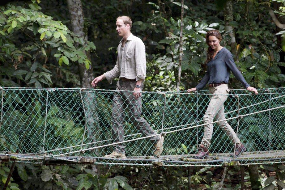 Kate et William ont profité de leur passage en Malaisie pour visiter le Centre de recherche de la forêt tropicale de l'Île de Bornéo, le 15 septembre. | 19 septembre 2012