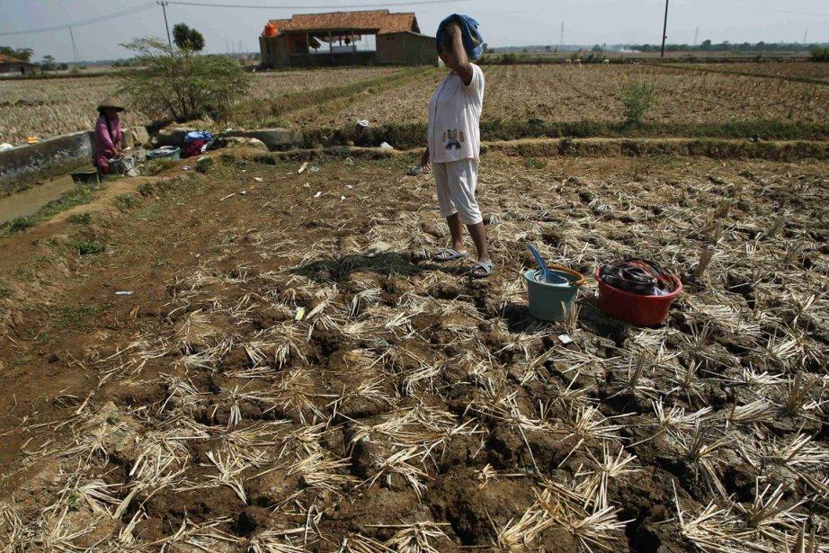 Trois milliards d'humains n'ont, actuellement, pas de revenus... (Photo archives Reuters)