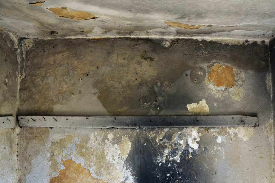 Des moisissures dans une maison.... (Photos.com)