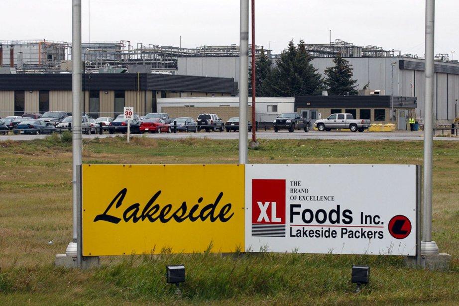 Le président de XL Foods s'est excusé hier... (Photo Jeff McIntosh, PC)