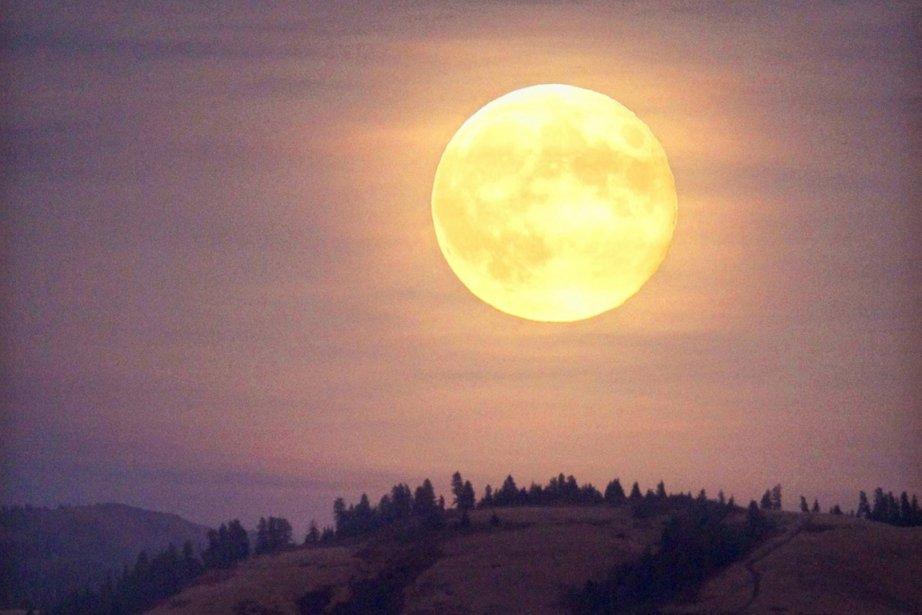 Apporter un demi-litre d'eau sur la Lune coûte... (Photo AP)