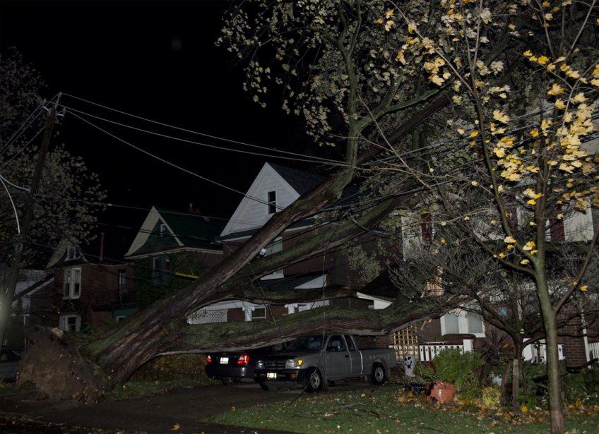 Déraciné par les puissants vents soufflés par Sandy, un arbre s'est abattu sur des résidences et des véhicules de ce quartier résidentiel de la Ville Reine, Toronto, le 30 octobre. | 30 octobre 2012