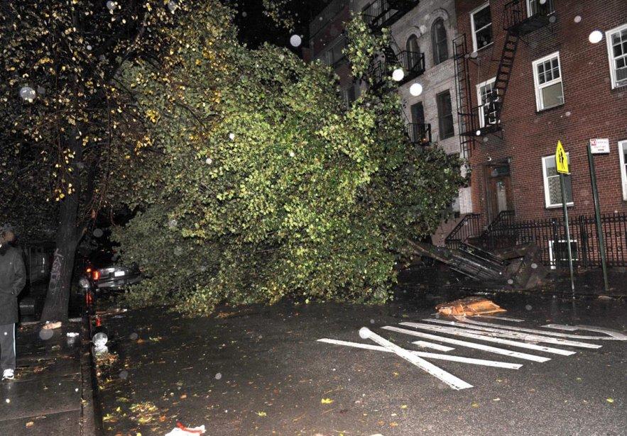 Un arbre déraciné bloque la 7e rue à proximité de l'Avenue D, à East Village, à New York, le 29 octobre. | 30 octobre 2012