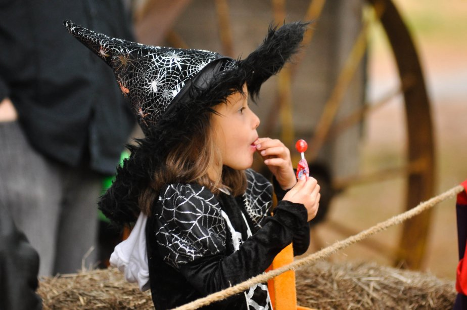 La belle petite sorcière, Florence Lamothe, fait partie des nombreux enfants qui ont participé à la sixième édition de la quête des enfants perdus à Saint-Mathieu-du-Parc, qui s'est déroulée le 27 octobre. | 30 octobre 2012
