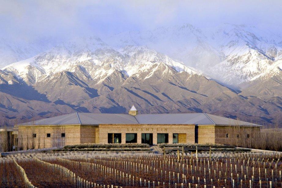 Le vignoble Bodegas Salentein dans la vallée de... (Photo: Bloomberg)