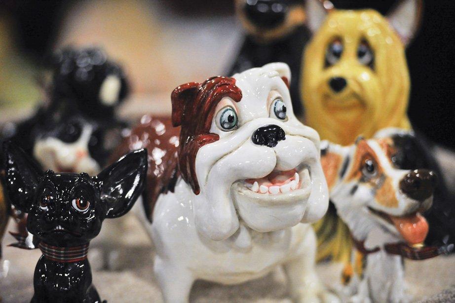 Expo des animaux de compagnie d'Ottawa | 11 novembre 2012