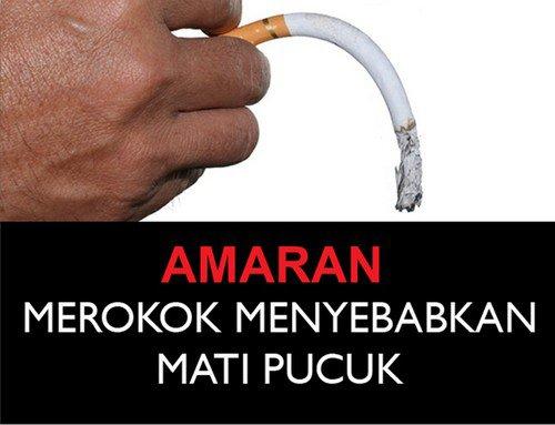 epuis 2008, les paquets de cigarettes de Brunei affichent six messages différents. En 2012, le ministère de la Santé du pays a fait passer de 50% à 75% l?espace occupé par ce message sur les deux faces des paquets. | 15 novembre 2012