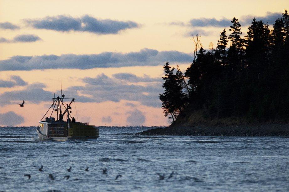 Au large de la Nouvelle-Écosse.... (Photo La Presse Canadienne)
