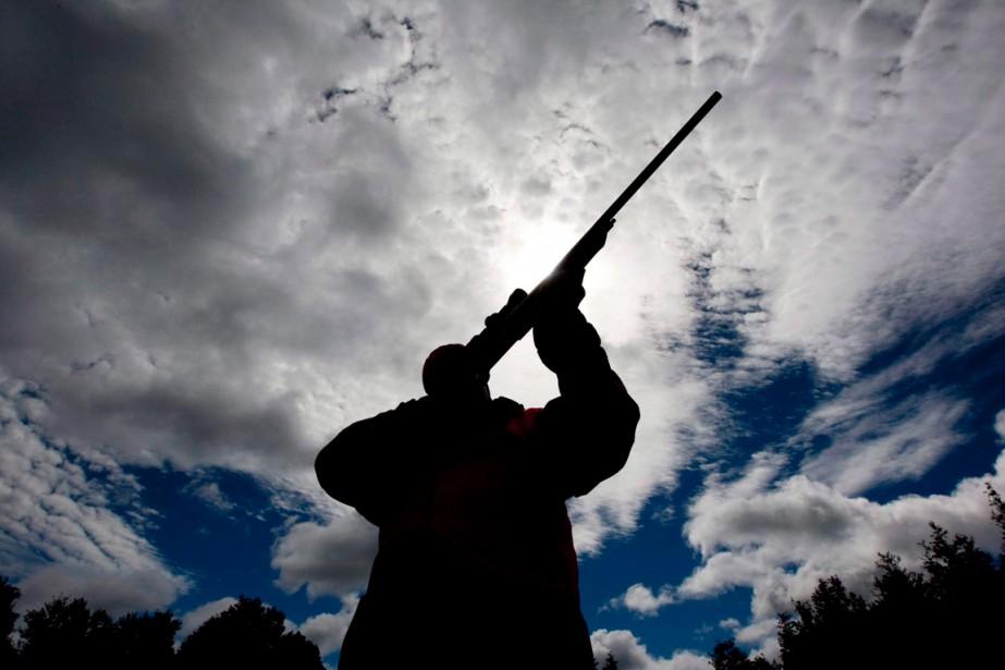 Le fait d'être propriétaire d'une arme à feu... (Archives La Presse Canadienne)