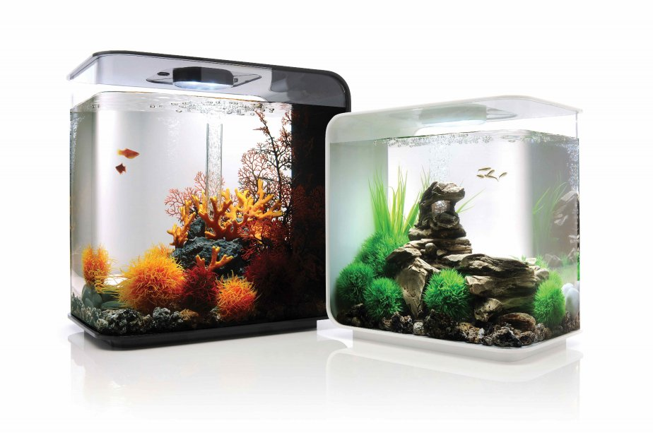 petit aquarium design pas cher 28 images aquarium 30l achat vente aquarium 30l pas cher. Black Bedroom Furniture Sets. Home Design Ideas