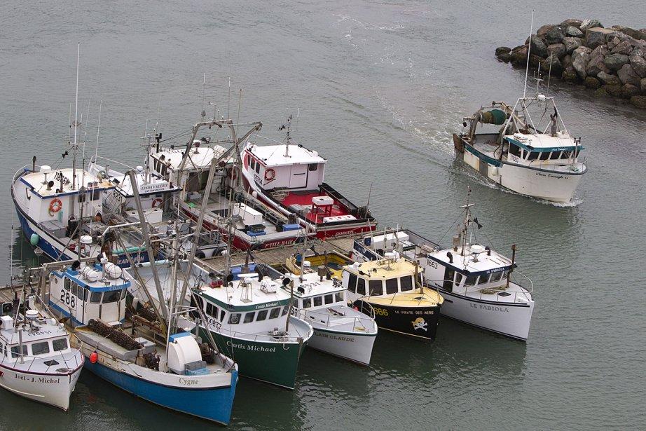 Des bateaux de pêcheurs, aux Îles-de-la-Madeleine.... (Photo: Robert Skinner, archives La Presse)