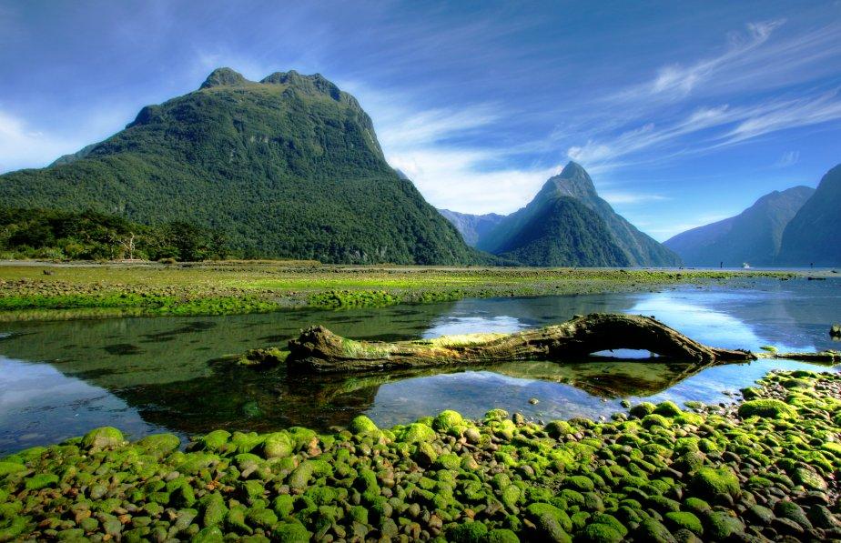 Les territoires vierges de la Nouvelle-Zélande, vus dans le film