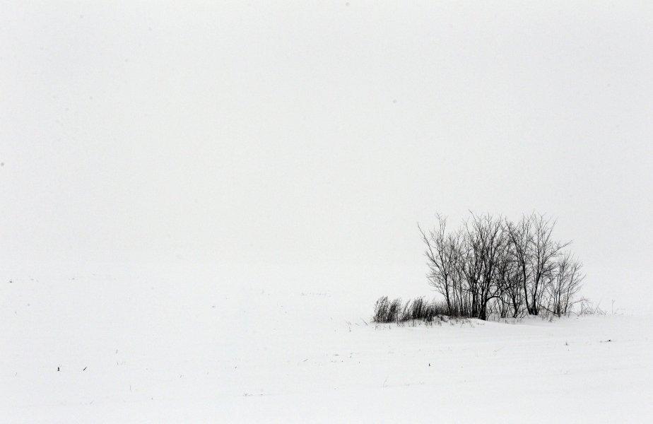 Des blizzards ont bloqué des routes, provoqué des pannes de courant et paralysé un aéroport des Balkans le 11 décembre, alors que cette région du sud-est de l'Europe est frappée par des conditions hivernales brutales pour une quatrième journée consécutive.  Des dizaines de villages sont coupés du monde, dont certains qui sont privés d'alimentation électrique. Des écoles ont décidé de fermer leurs portes pour le restant de la semaine. | 11 décembre 2012