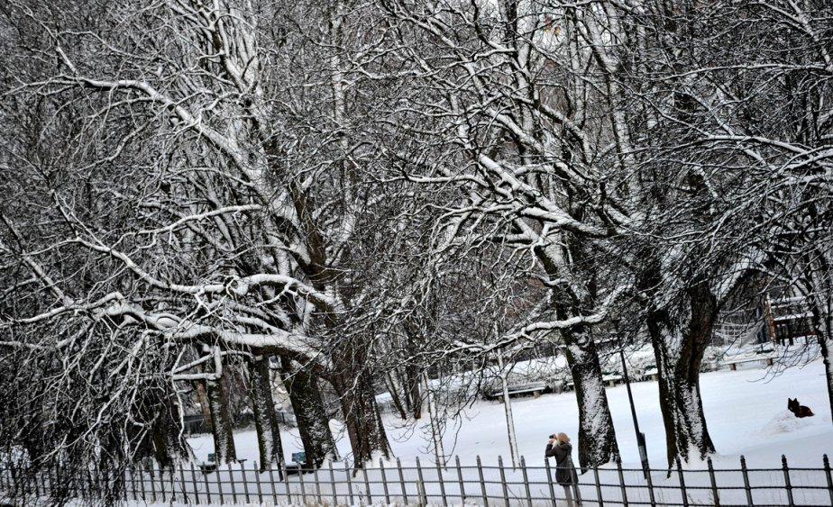 Munich, Allemagne | 13 décembre 2012