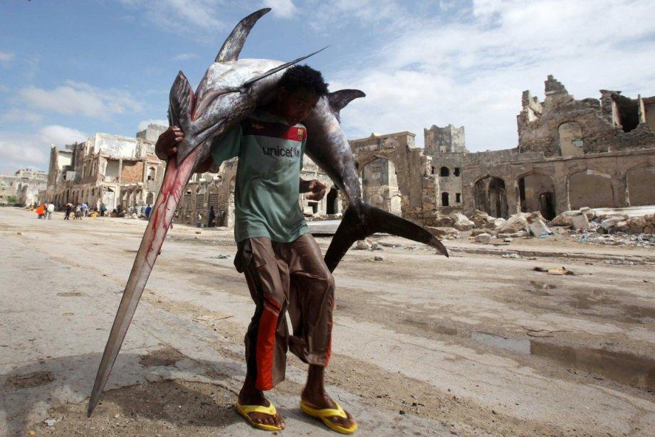 Un pêcheur somalien amène sa prise du jour au marché de Mogadishu | 21 décembre 2012