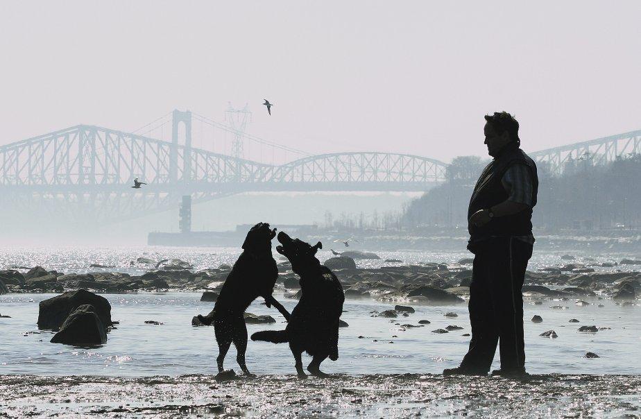 Le temps doux au mois de mars faisait penser à l'été sur le bord du fleuve. | 27 décembre 2012