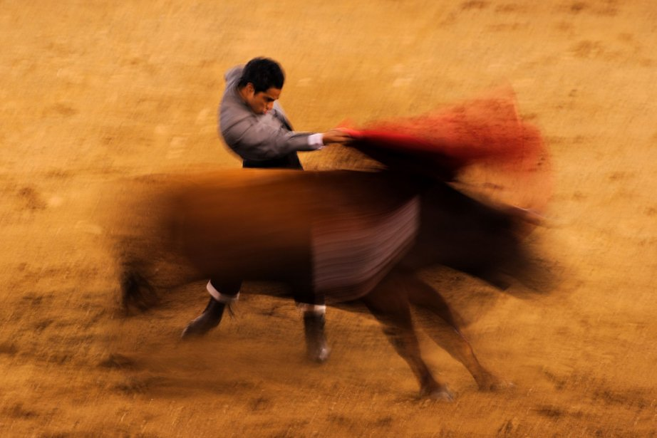 Le torero Luis Bolivar dans l'arène de Canaveralejo en Colombie | 28 décembre 2012