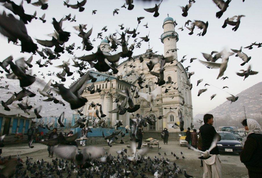 Les pigeons à l'extérieur de la mosquée Shah-e-Doshamshera à Kaboul. | 28 décembre 2012