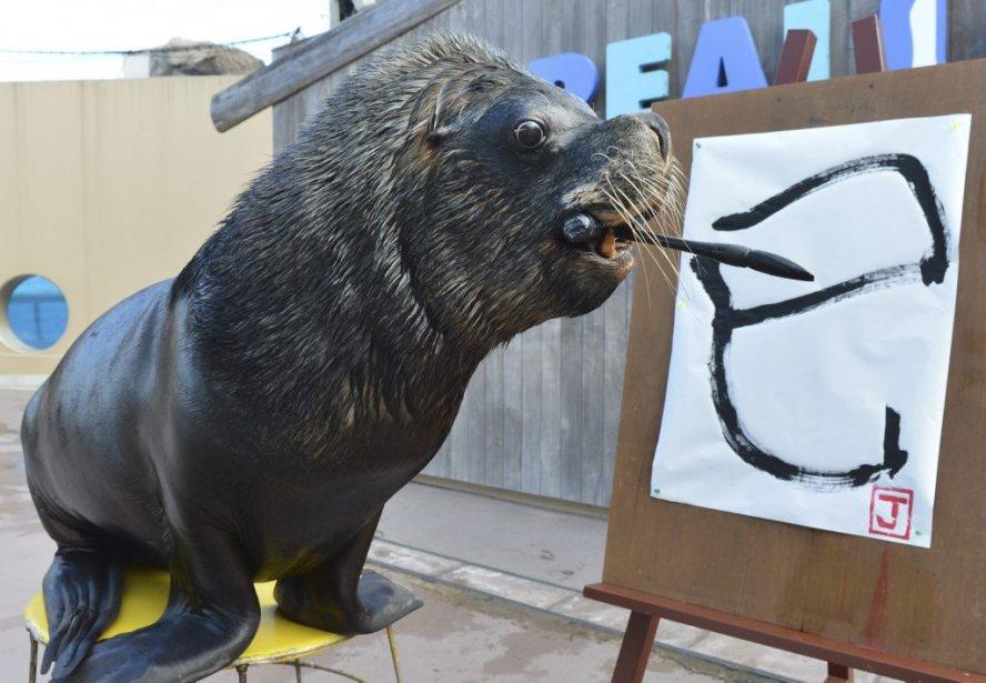 Jay l'otarie peint au Hakkeijima Sea Paradise aquarium de Yokohama au Japon. | 4 janvier 2013
