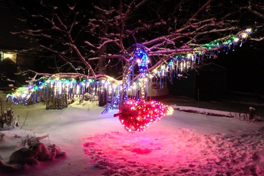 Comme elle est originale, cette sculpture illuminée de Noël de Roger Robitaille, de Stoneham, qu'il a baptisée: L'oiseau piqueur… au voleur! | 4 janvier 2013