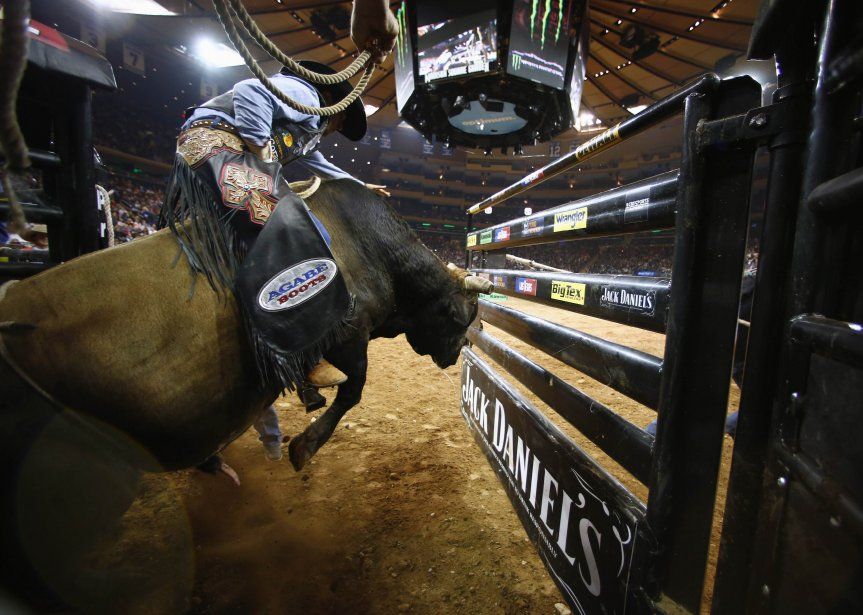 Un concurrent monte un taureau pour le Professional Bull Riders Invitational au Madison Square Garden, à New York. | 7 janvier 2013