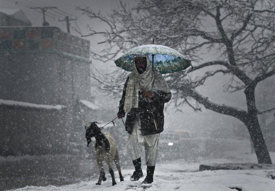 Un homme et sa chèvre à Kaboul. | 7 janvier 2013