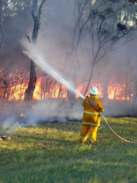 Un pompier à l'oeuvre à Green Point. | 8 janvier 2013