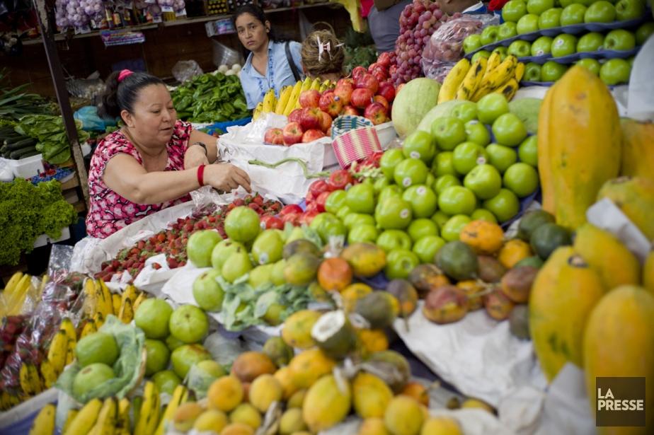 Une dame choisit des fraises au marché central (mercado centrale), un des plus importants marchés de San Salvador. (Photo: David Boily, La Presse)