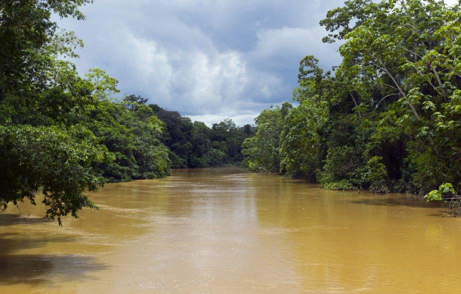 L'Amazone en Amérique du Sud. | 14 janvier 2013