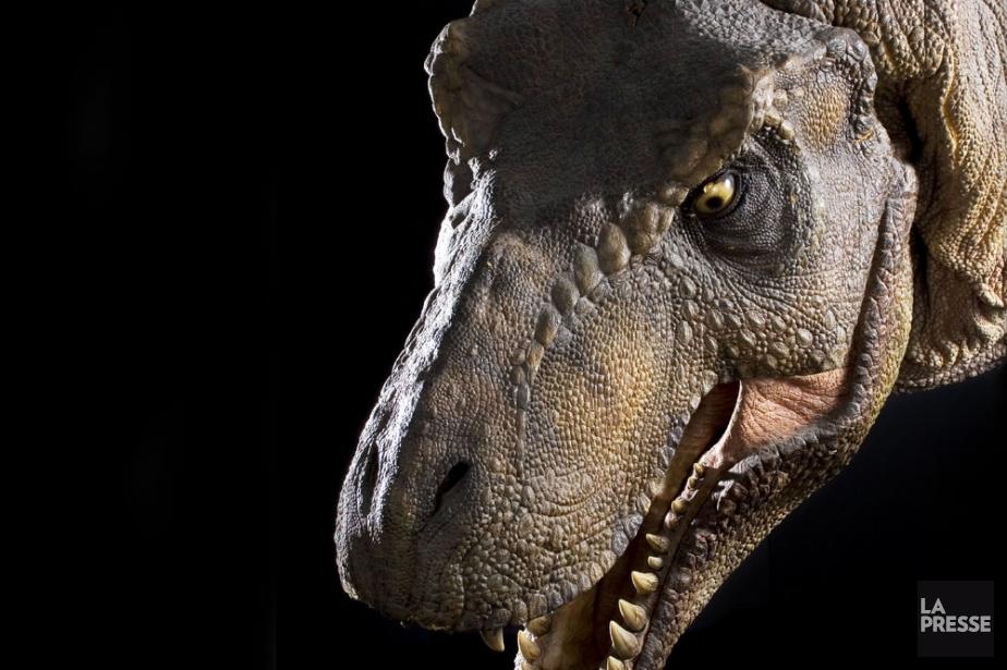 Steven Spielberg et Universal ont récemment annoncé... (Photo: Bloomberg News)