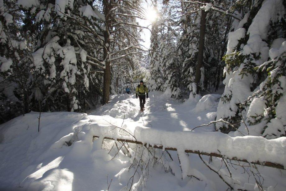 Parc régional de la Chute-à-Bull. (Photo: Martin Chamberland, La Presse)