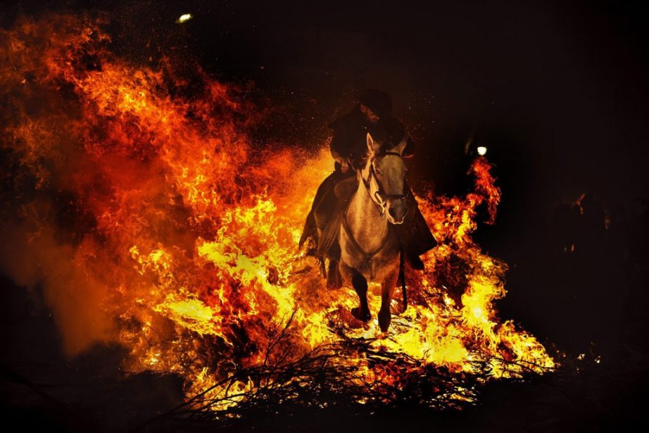 À San Bartolome de Pinares, des cavaliers ont jeté le 16 janvier leurs montures par dessus des flammes. Comme chaque année, veille de la Saint-Antoine, le saint patron des animaux, le défilé des cavaliers a parcouru les rues de ce village espagnol, franchissant les tas de branchages en feu. Selon cette tradition païenne, la fumée et le feu servent à purifier les animaux pour qu'il ne leur arrive rien de mal durant l'année. | 17 janvier 2013