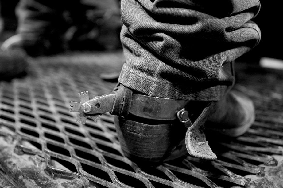 Les éperons d'un cowboy qui assiste au rodéo. | 18 janvier 2013