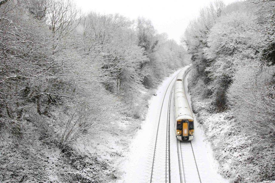 Crowhurst, Angleterre | 21 janvier 2013