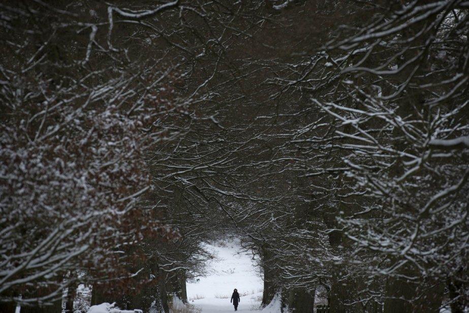Kent, Angleterre | 21 janvier 2013