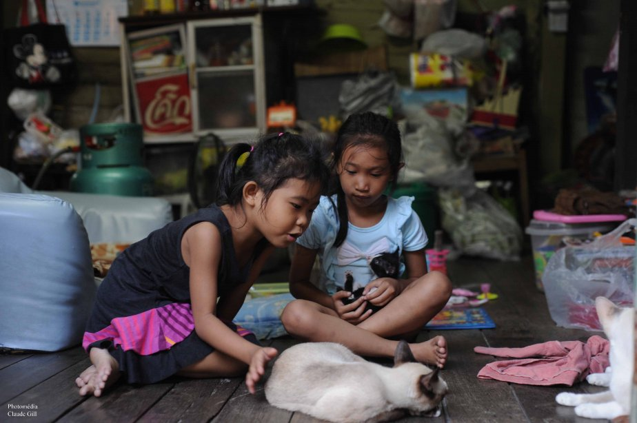 Les fillettes et les minets. Les khlongs, Bangkok. (Photo: Claude Gill)