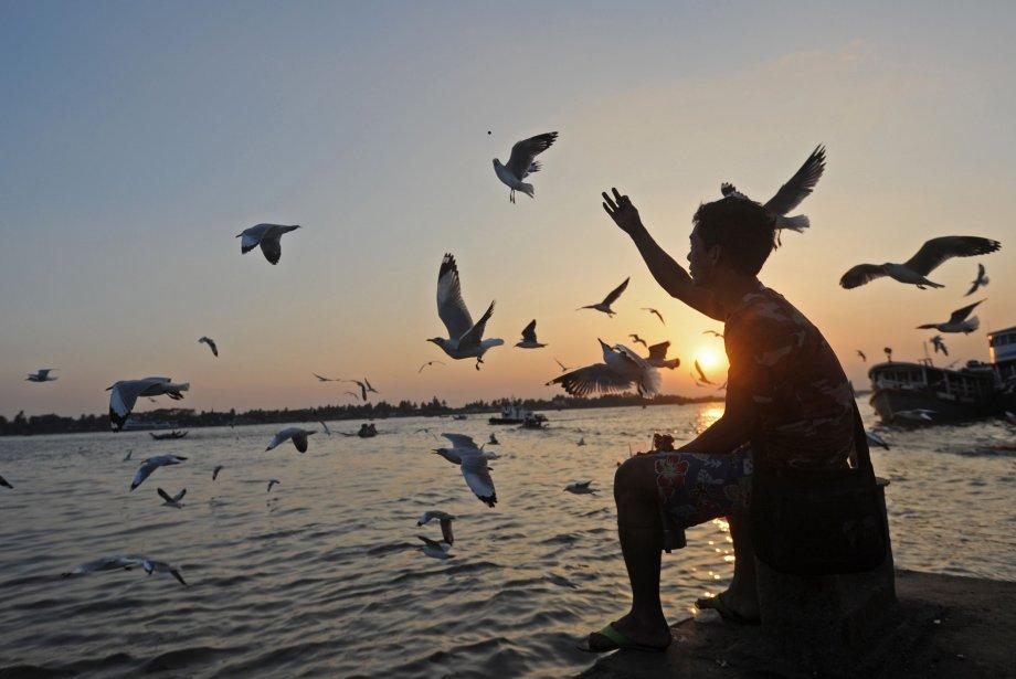 Un homme nourrit des oiseaux lors du coucher de soleil à Rangoun, en Birmanie. | 31 janvier 2013
