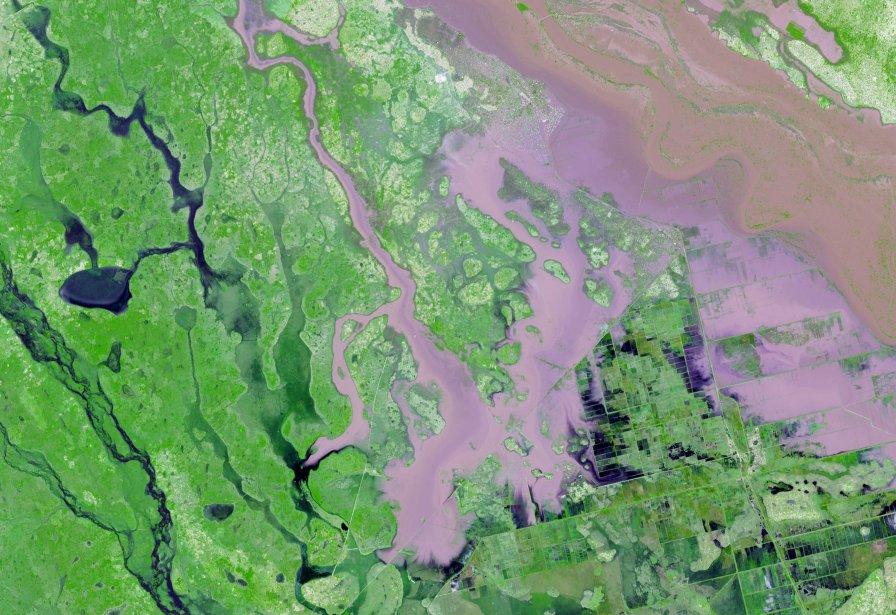 Une image satellite prise le 25 janvier 2013 illustrant les inondations de la rivière Limpopo, près de la ville de Chokwe. | 31 janvier 2013