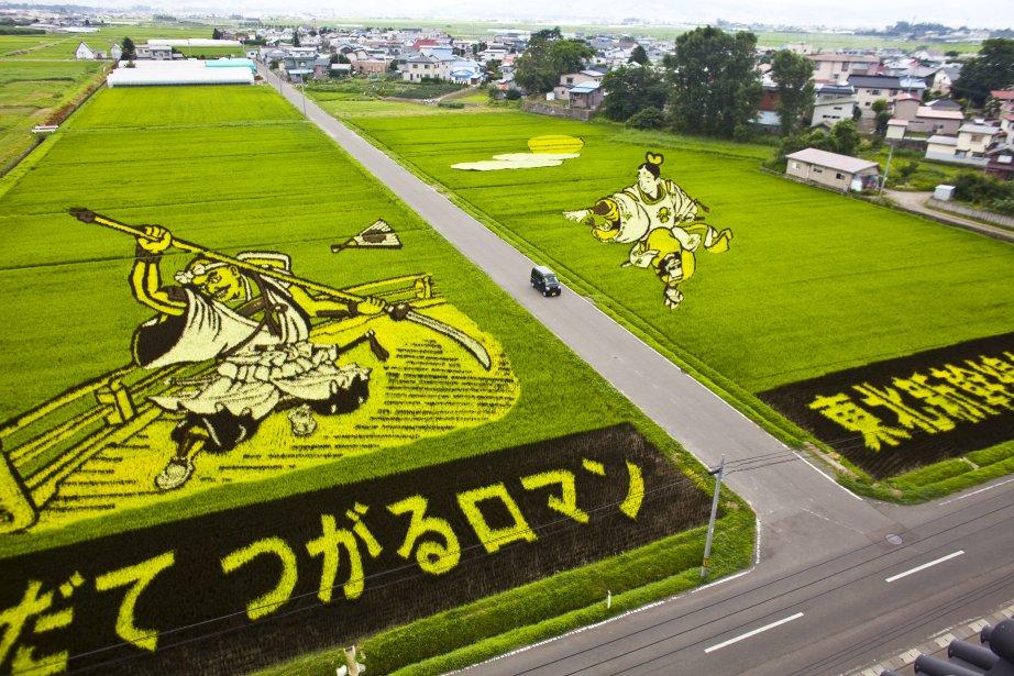 Une vue aérienne d'une terrasse de riz à Inakadate, au Japon. | 31 janvier 2013