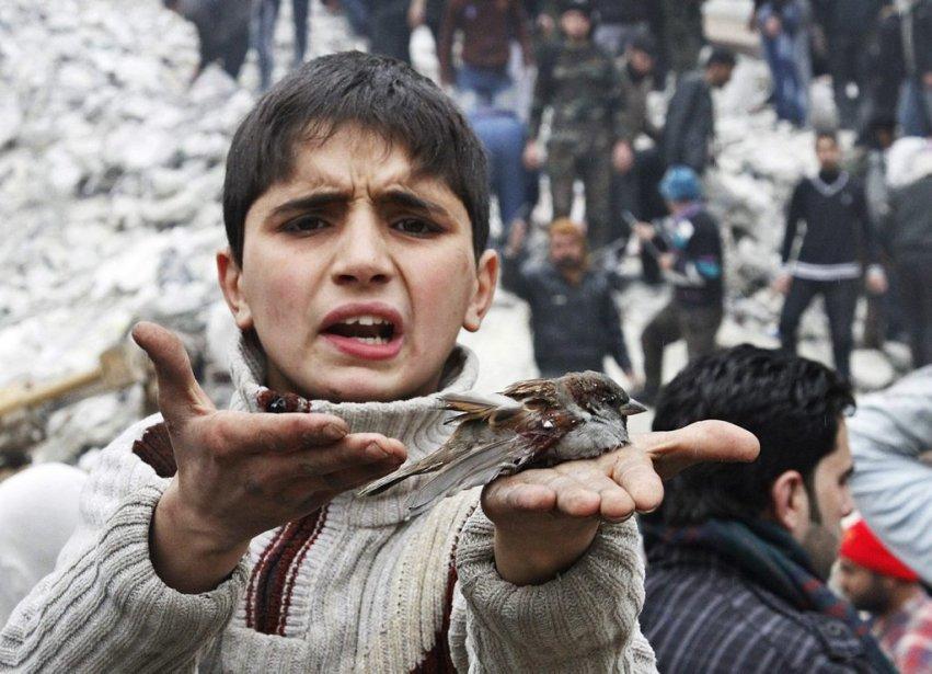 Un enfant syrien s'indigne des frappes aériennes à Alep, un oiseau blessé dans la main. | 6 février 2013