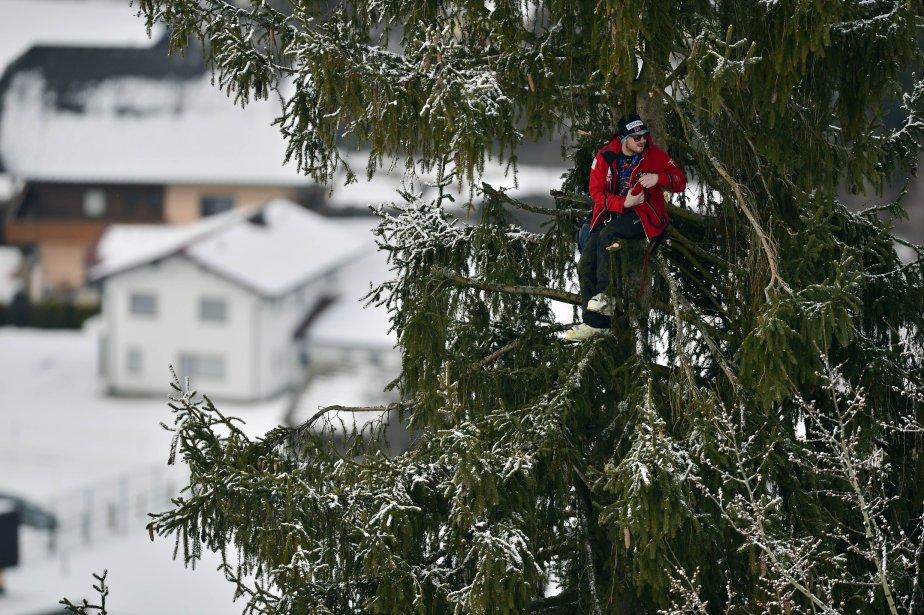 Un spectateur est perché dans un arbre pour observer les Championnats du monde de ski à Schladming, en Autriche. | 6 février 2013