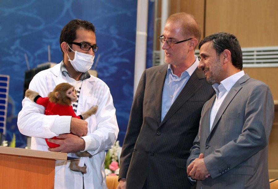 Le président iranien Mahmoud Ahmadinejad observe un singe que l'agence... | 2013-02-08 00:00:00.000