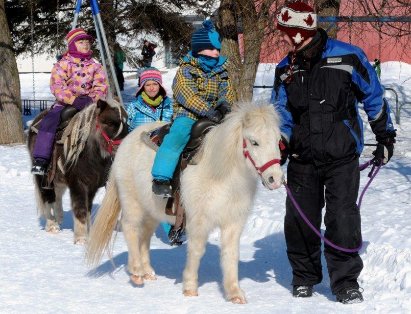 Le parc Anjou du district de Rigaud à Trois-Rivières était animé lors du carnaval d'hiver. Des activités étaient prévues toute la journée pour le plus grand bonheur des enfants. Maelie Paquin, Lea Innocenti, Olivier Paquin et Franck Innocenti ont profité de l'occasion pour faire du poney. | 12 février 2013