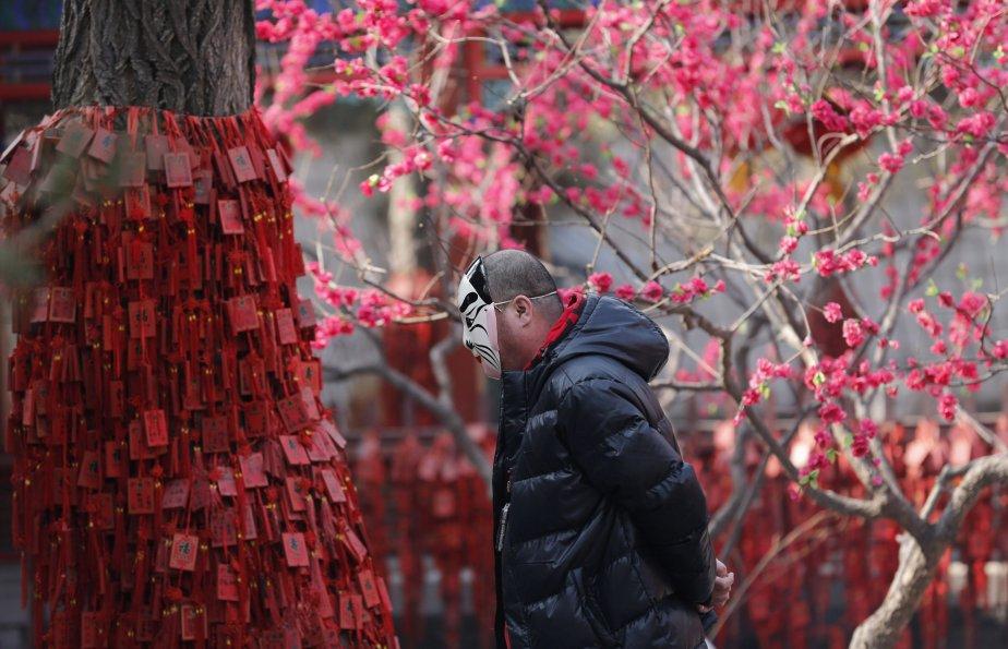 Un homme portant un masque se promène près d'un arbre... | 2013-02-13 00:00:00.000