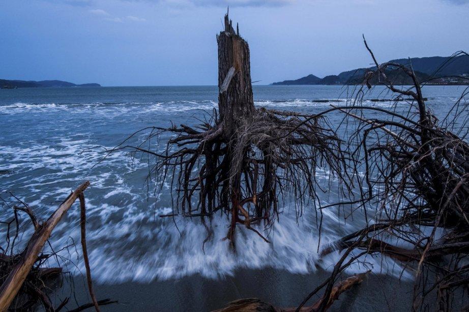 L'Australien Daniel Berehulak, photographe pour Getty Images a remporté la médaille de bronze dans la catégorie informations générales pour sa série «Le Japon après les vagues» qui a pour sujet les dégâts causés par le tsunami de 2012. | 15 février 2013